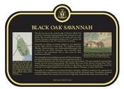 Black Oak Savannah Commemorative Plaque, 2016